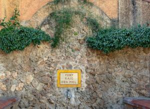 Font de la Mina i safarejos Municipals